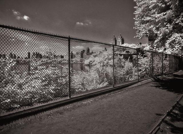 14New York Central Park051.jpg