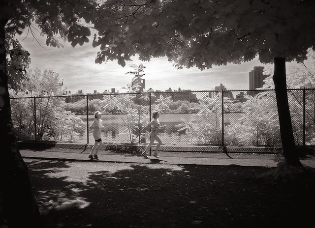 15New York Central Park050.jpg