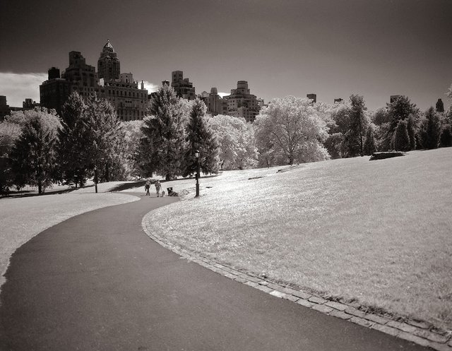 18New York Central Park009.jpg