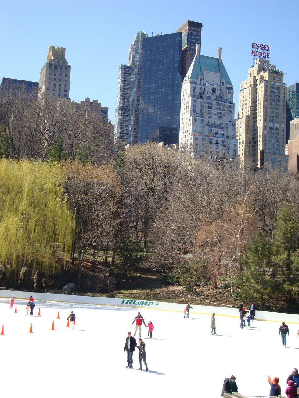 Central Park NYC in Spring