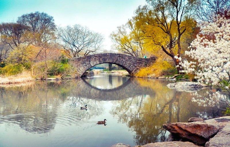 The pond and Gapstow Bridge