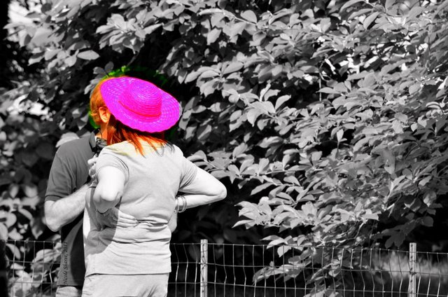 Lady in the Pink Hat!