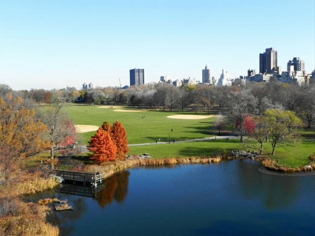 Crisp Fall Day in the Park