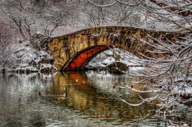 Gapstow Bridge- Winter Dance