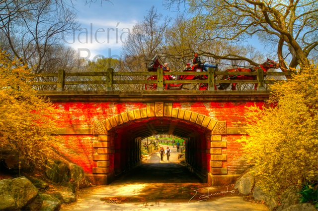Willowdell Arch Bridge- Spring is in the Air..