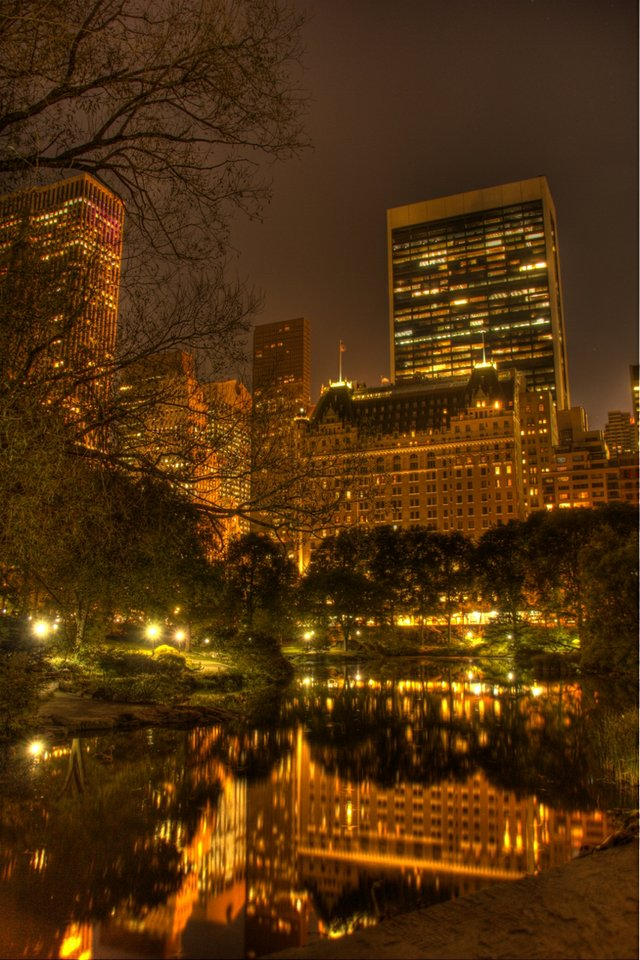night shot over the pond
