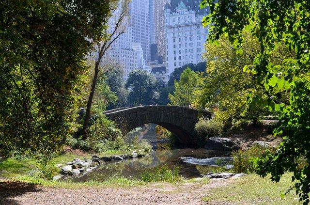 Gapstow Bridge on Columbus day