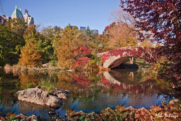 Autum in Central Park
