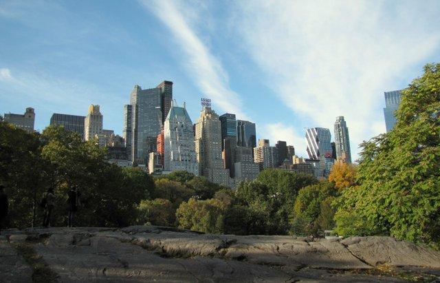 South Central Park