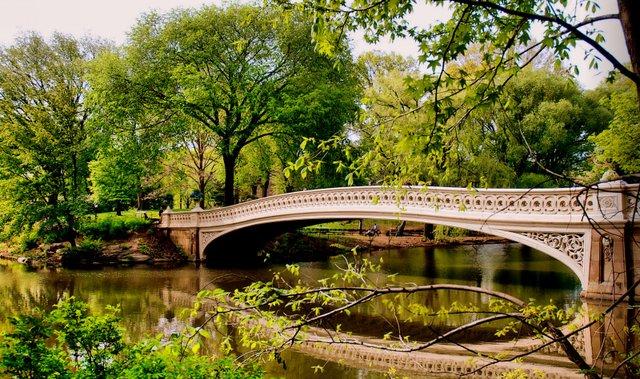 Bow Bridge in Spring