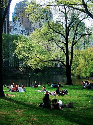 Enjoying Central Park