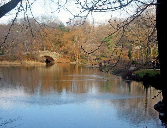 Central Park - Pond
