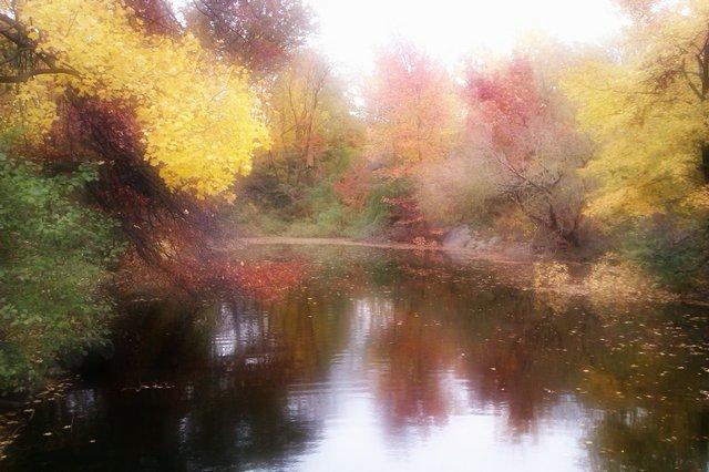 Central Park-@ lake