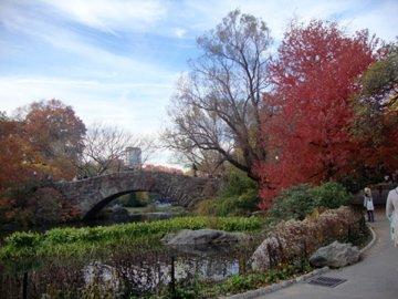 Central Park lake: Autum