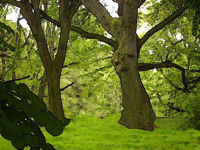 Saad tree