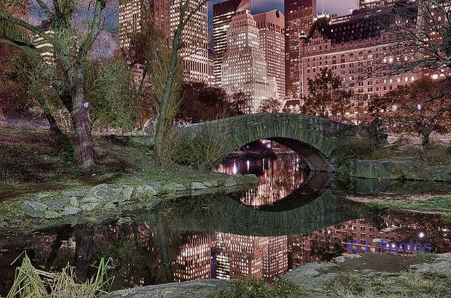 Central Park at Night