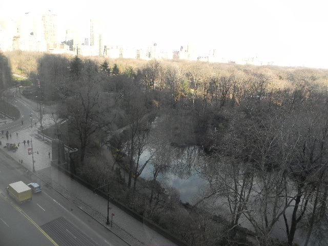 Central Park from Park Lane Hotel
