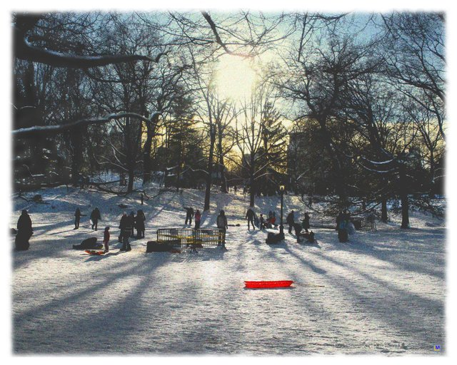 Central Park, Snow, Sunset, and a Red Sled