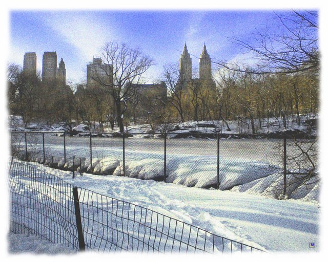 Central Park in Winter 2