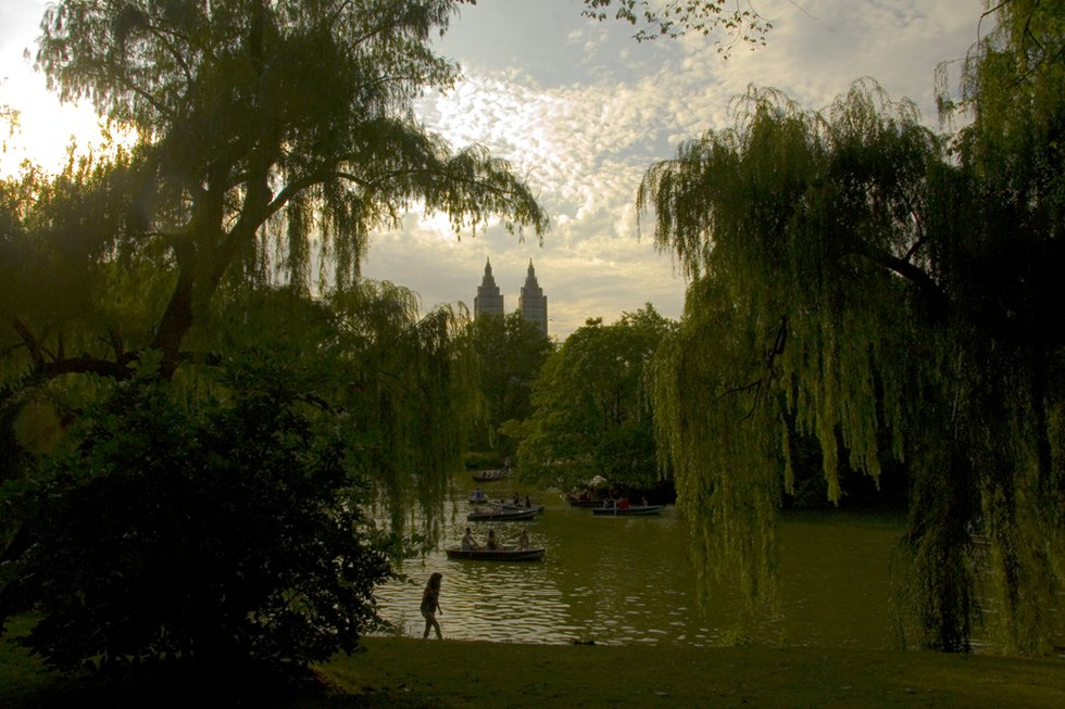 Sun down in Central Park