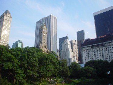 The park inside the city