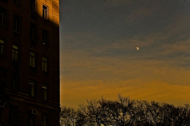 moon over Central Park