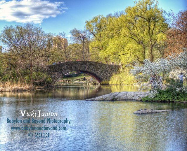 Magical Spring Day at Gapstow Bridge