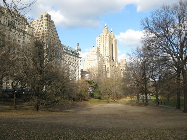 A different view of Central Park.