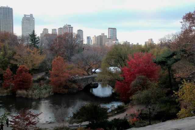 Autumn 2013 Nov. by Sonia Villa