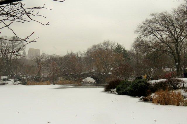 Winter 2013   by Sonia Villa