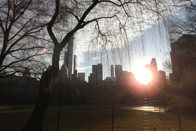 Winter Solstice in Central Park