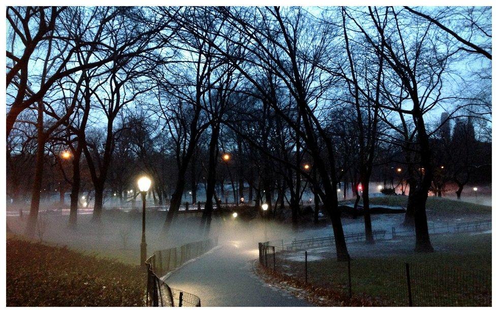 Rising Winter Fog