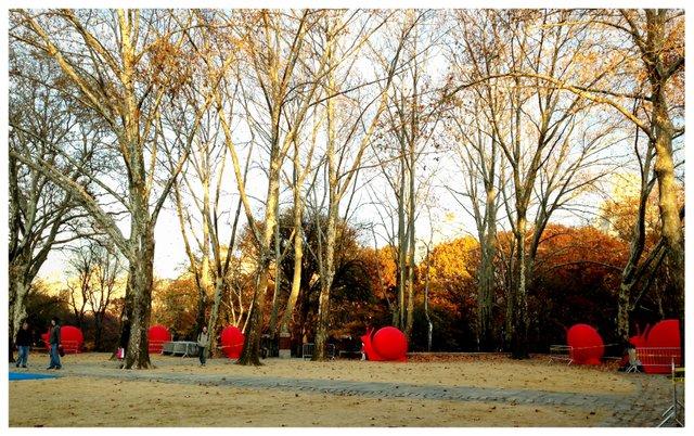 Giant Red Snails REgeneration Art Project