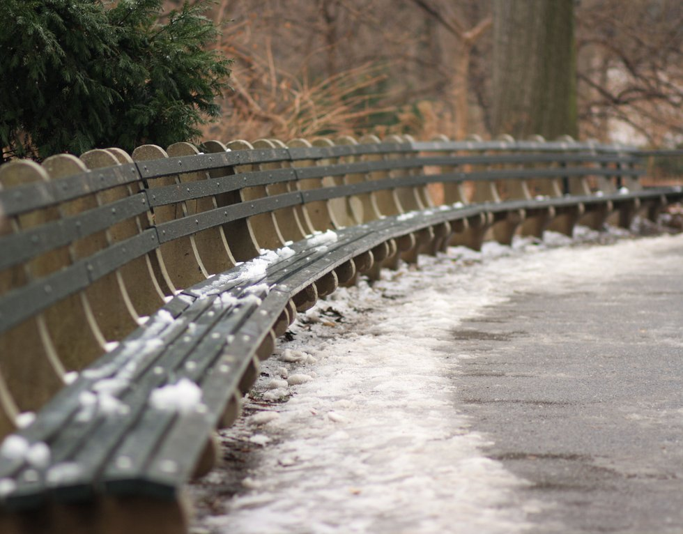 Snowy Benches