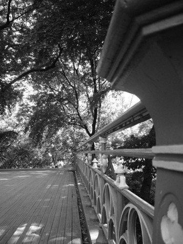A beautiful bridge in Central Park