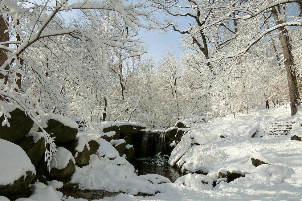 Winter Wonderland CPK 2014