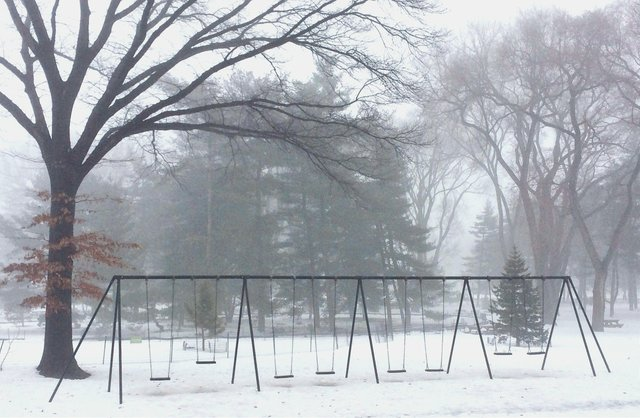 Foggy Swings