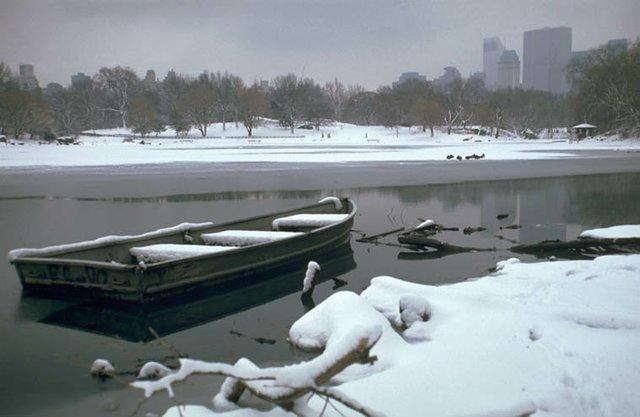 Icebound Rowboat