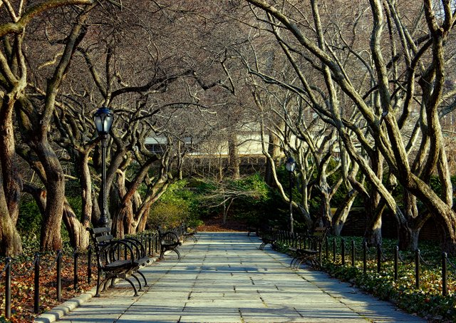 Central Park Conservatory Gardens