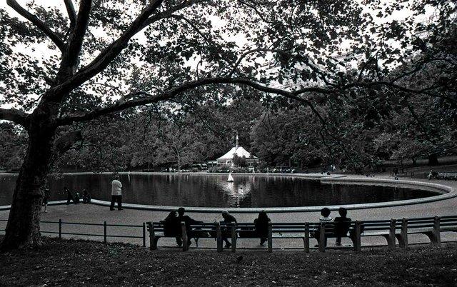 Conservatory Pond 039