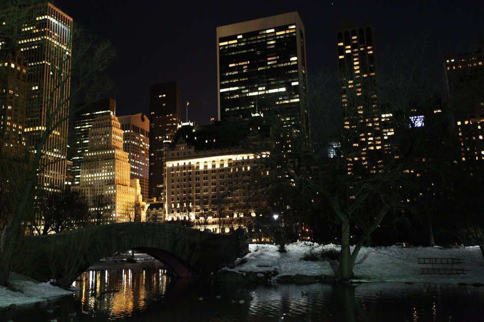 Central Park By Night