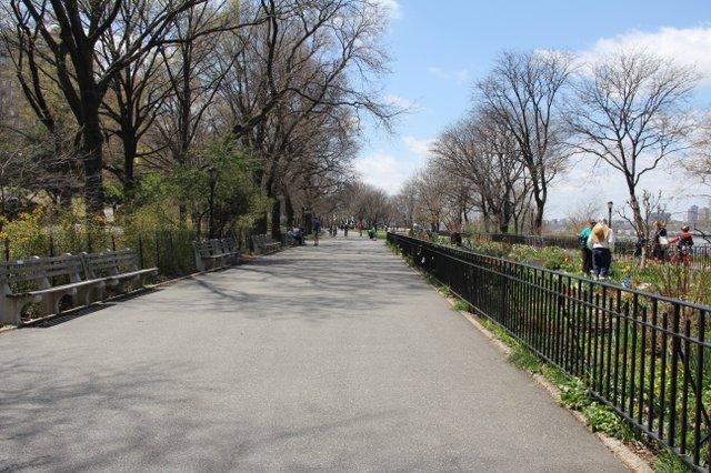on a run i nthe park