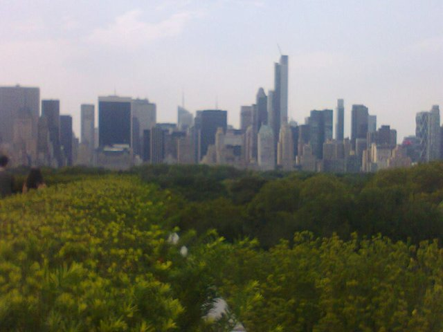 Manhattan Skyline from Met roof