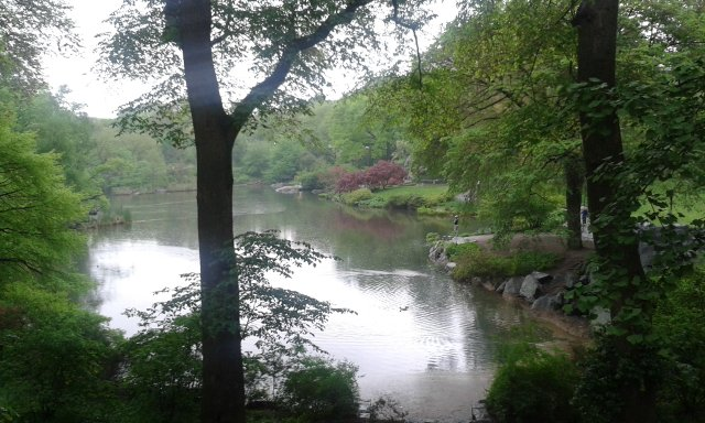 Peaceful rain day