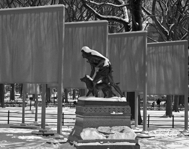 The Gates - Central Park Feb 2005