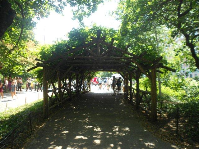 arco de plantas