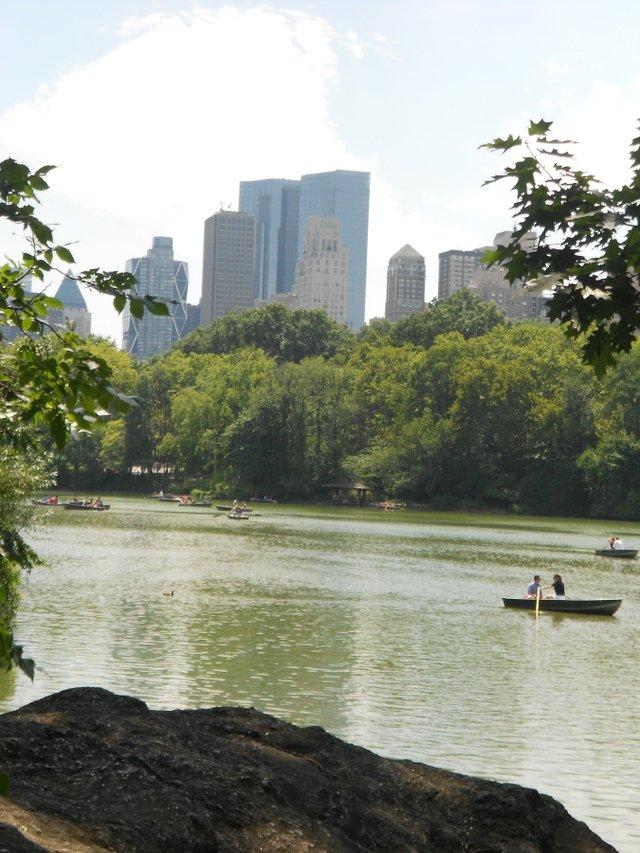 naturaleza y ciudad