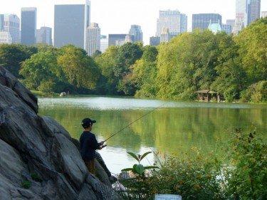Huck Finn in Central Park