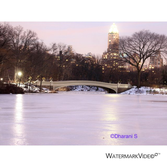Central park Lake Snow View