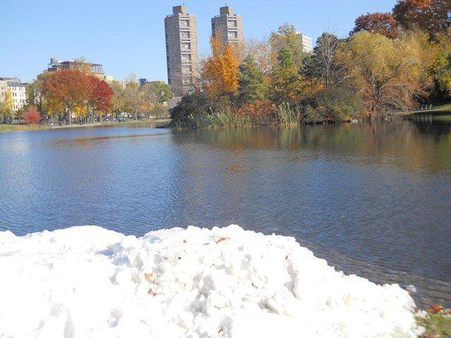 4 Seasons Central Park